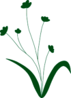 grønne blomster